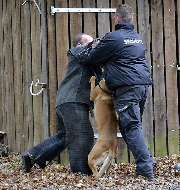 Beveiliging Heerenveen - Security Noord Nieuwenhuis
